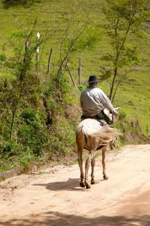 caminho da fe, horseman