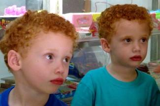 rode tweeling